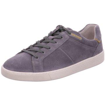 Pius Gabor Sneaker LowSneaker grau