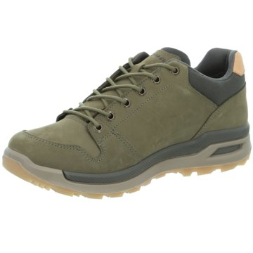 LOWA Outdoor SchuhLOCARNO GTX LO - 310812 grün