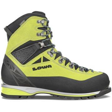 LOWA Outdoor SchuhALPINE EXPERT GTX - 210021 -