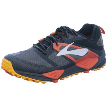 Brooks Trailrunning grau