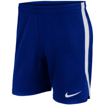 Nike FußballshortsDRI-FIT - AJ1235-463 -