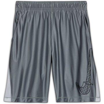 Nike Kurze SporthosenDRI-FIT GRAPHIC - DA0258-077 grau