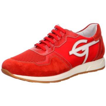 GALIZIO TORRESI Sneaker Low rot