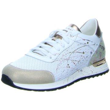 NOCLAIM Sneaker, weiß-grau-blau