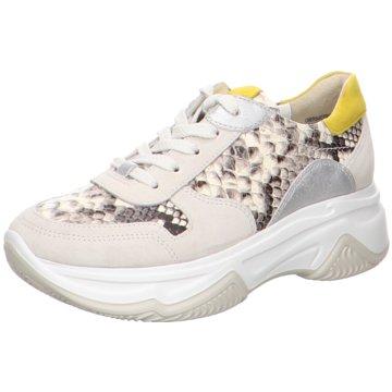 Paul Green Sneaker Low4764 weiß