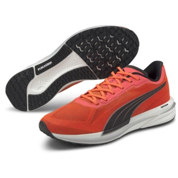 Puma RunningVELOCITY NITRO - 194596 orange