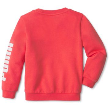 Puma SweatshirtsLIL  CREW TR - 589250 pink