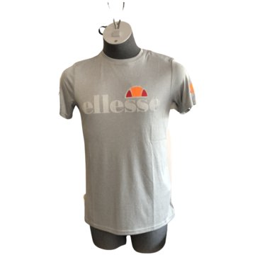 Ellesse T-Shirts print grau
