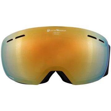 ALPINA Ski- & SnowboardbrillenGRANBY QVM - A7211736 schwarz