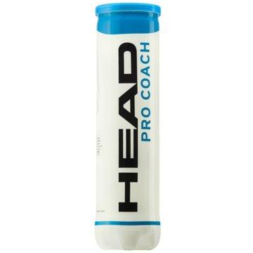 Head Tennisbälle4B HEAD PRO COACH - 12DZ - 576044 sonstige
