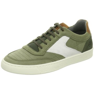 Bullboxer Sneaker Low grün