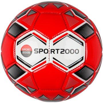 SPORT 2000 Bälle -