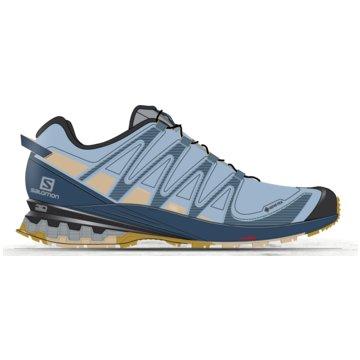 Salomon TrailrunningXA PRO 3D v8 GORE-TEX - L41118300 blau