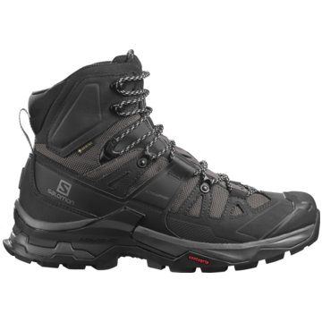 Salomon Outdoor SchuhQUEST 4 GTX MAGNET/BLACK/QUA - L41292600 grau