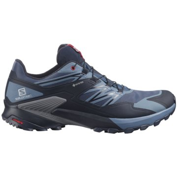 Salomon TrailrunningWINGS SKY GORE-TEX - L41386100 blau