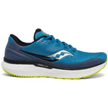 Saucony RunningTRIUMPH 18 - S20595 blau
