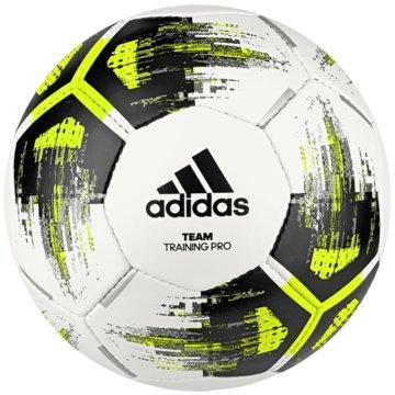 adidas FußbälleTEAM TRAINING PRO BALL - CZ2233 schwarz