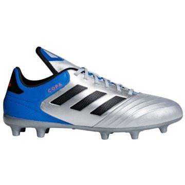 adidas Nocken-SohleCopa 18.3 FG silber