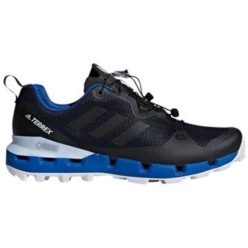 adidas Outdoor SchuhTerrex Fast GTX-Surround blau