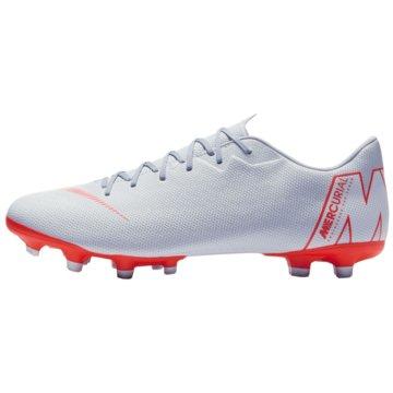 Nike Nocken-Sohle grau