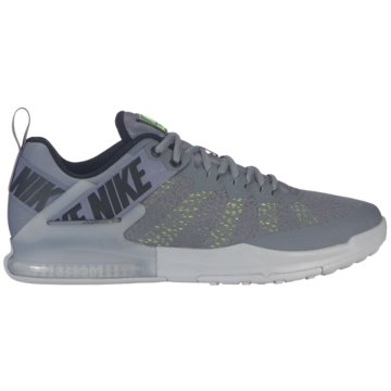 Nike TrainingsschuheZoom Domination TR 2 grau