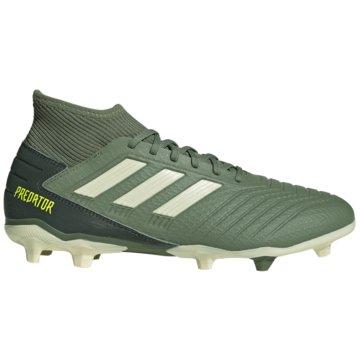 adidas Nocken-SohlePredator 19.3 FG grün