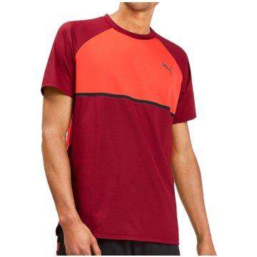 Puma T-Shirts rot