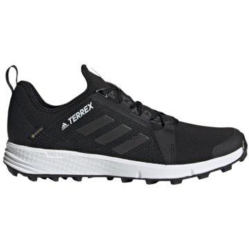 adidas Outdoor SchuhTerrex Speed GTX schwarz