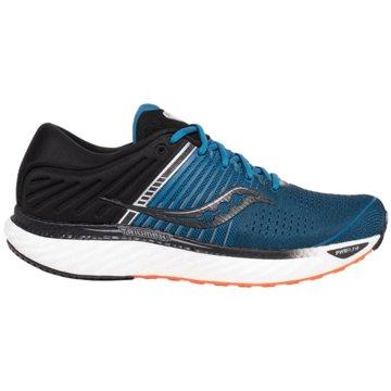 Saucony RunningTriumph 17 blau