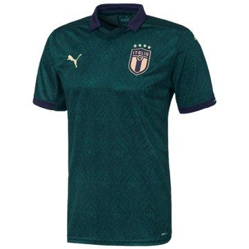Puma Fan-TrikotsFIGC Third Shirt Replica grün