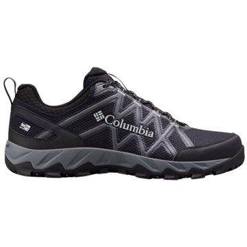 Columbia Outdoor SchuhPEAKFREAK X2 OUTDRY - 1864991 schwarz