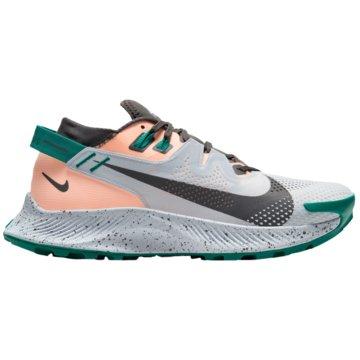 Nike RunningPEGASUS TRAIL 2 - CK4309-004 grau