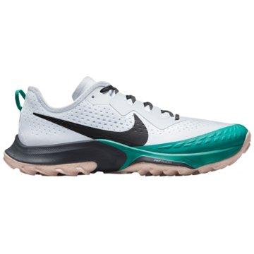 Nike RunningAIR ZOOM TERRA KIGER 7 - CW6066-003 grau
