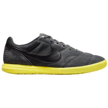 Nike Hallen-SohlePREMIER 2 SALA IC - AV3153-007 grau
