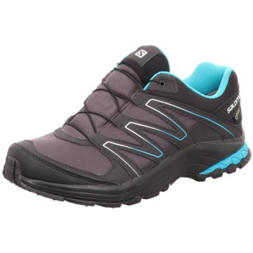 Trendigen Style Damen Salomon Schuhe Schuhe Xa Pro 3D Gtx W