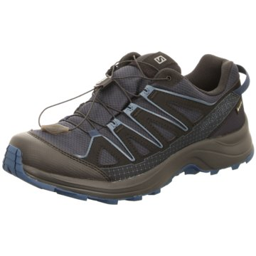 Salomon WalkingschuheXA Orion GTX blau