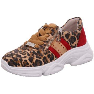 Gabor Sneaker LowSneaker -