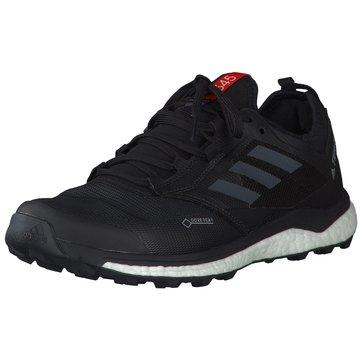 adidas TrailrunningTerrex Agravic Boost XT GTX schwarz
