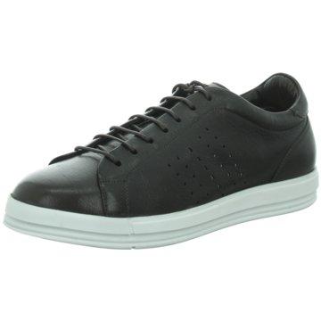 Franceschetti Sneaker braun