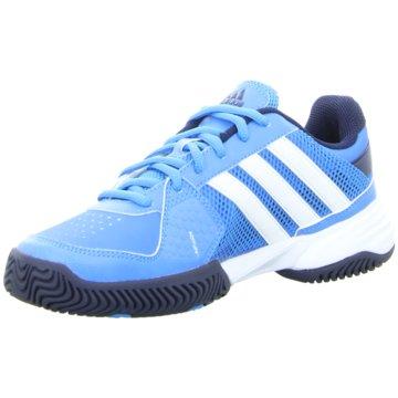 adidas Trainings- und Hallenschuh blau