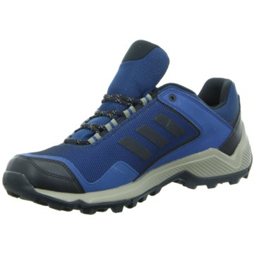 adidas Outdoor SchuhTerrex Eastrail GTX blau