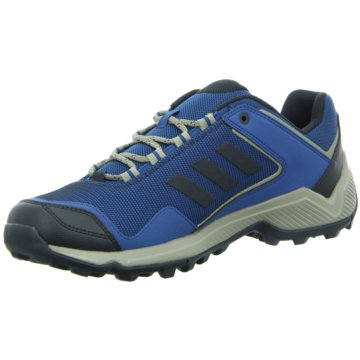 adidas Outdoor SchuhTERREX Eastrail Schuh - BC0975 blau