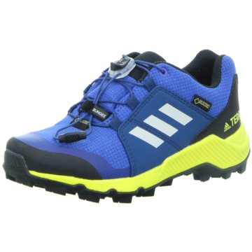 adidas Wander- & BergschuhTERREX GTX K - BC0599 blau