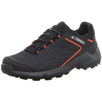 adidas Outdoor Schuh schwarz