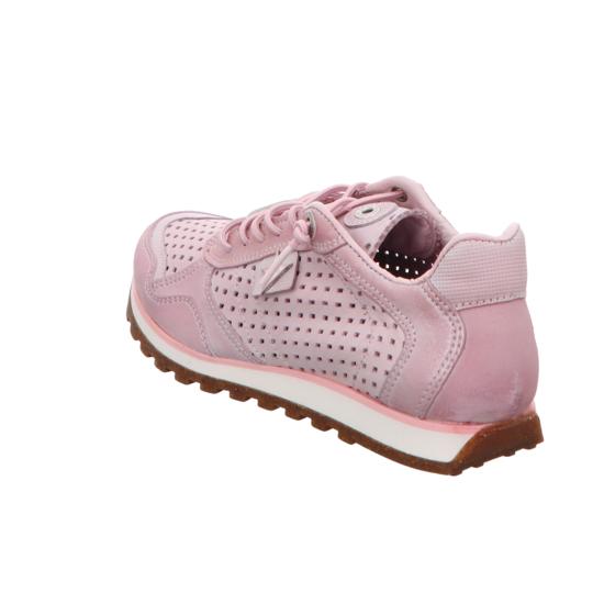 Jogger C848 rosa rosa rosa Sneaker Niedrig von Cetti--Gutes Preis-Leistungs-, es lohnt sich d0943e