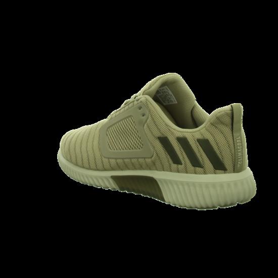 Climacool Sneaker Herren S80706 Schuhe khaki S80706 Herren Sneaker Sports von adidas--Gutes Preis-Leistungs-, es lohnt sich c03c12